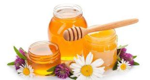 فروش عسل بصورت عمده